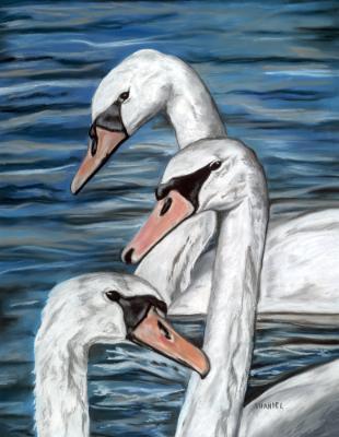 Three Swans A-Swimming