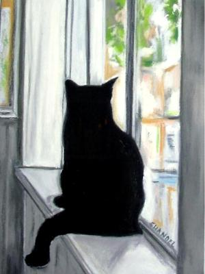 Sofi Watching